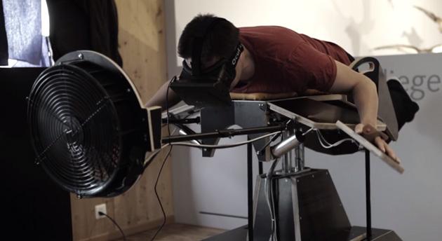 Oculus Rift Birdly